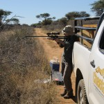 Cheetahs For Conservation's (CCF) Dr. Flacke Darting Bella